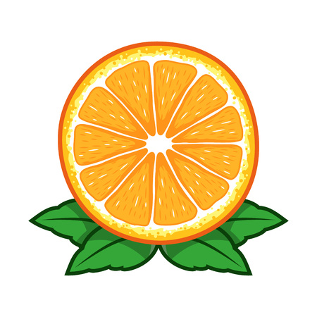 Orange fruit sliced vector cartoon