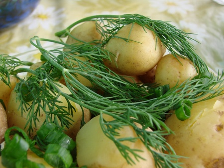 verdure: early appetizing potatoes with verdure Stock Photo