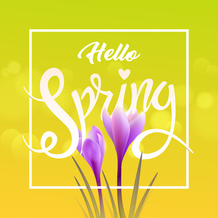 Hello spring illustration.
