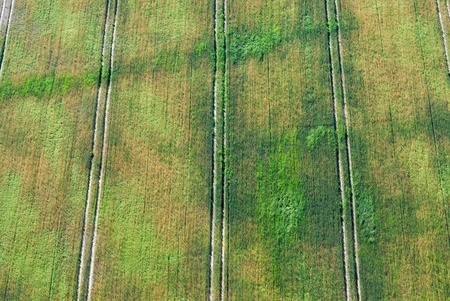 Aerial image of field photo