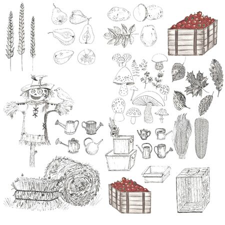 set of harvest elements in black-white colors
