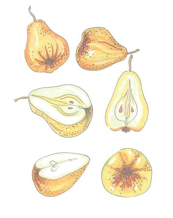 set of yellow pears in various forms on a white background