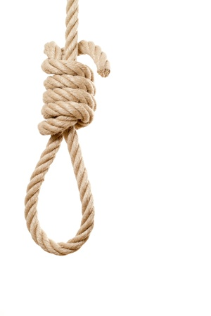 noose: Noose isolated on white background