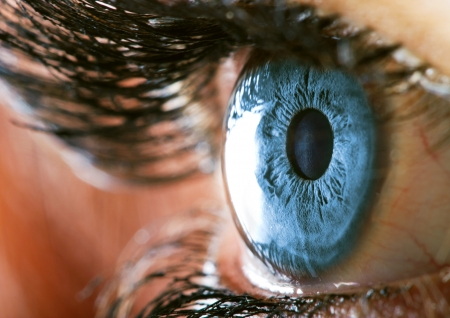 cornea: Human eye macro closeup view Stock Photo