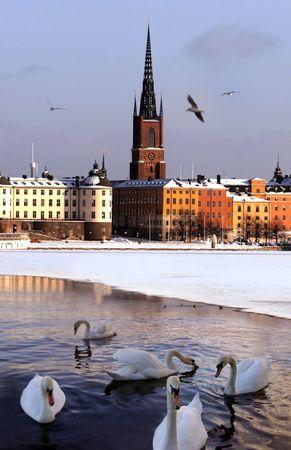 Stockholm Town photo