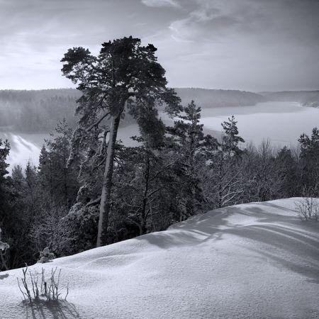 swedish winter Stock Photo - 326092