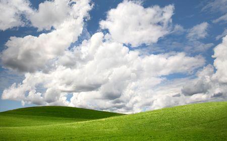 Green field Landscape Stock Photo - 2521332
