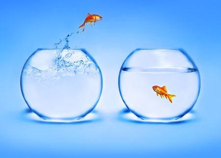 goldfish jumping out of the water Stock Photo - 2521340