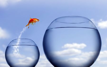 goldfish jumping out of the water Stock Photo - 2868590