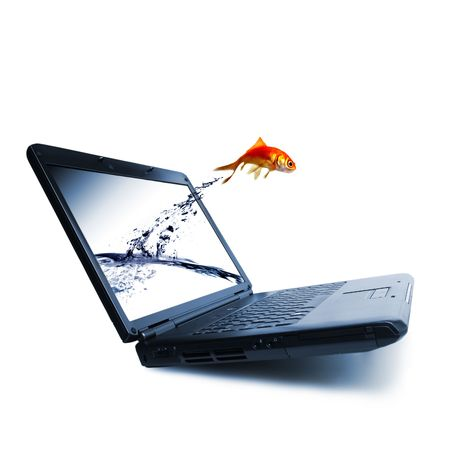 out of water: Goldfish jump out of the monitor Stock Photo