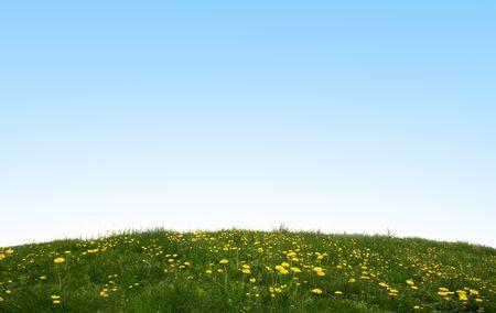 Green Field Stock Photo - 3172936