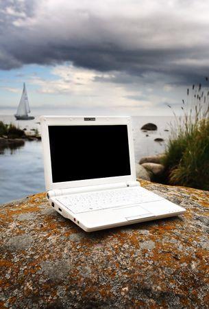 natur: bianco portatile nella natur Archivio Fotografico
