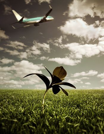 warming up: Airplane taking of and a single plant  Stock Photo
