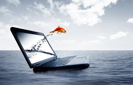 Goldfish sauter hors de l'écran à l'océan Banque d'images