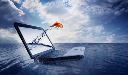 escape: Goldfish jump out of the monitor at ocean