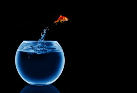 goldfish jumping out of the water Stock Photo - 4020734