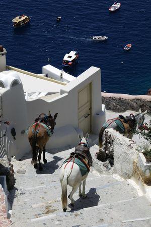 Santorini Stock Photo - 7152553