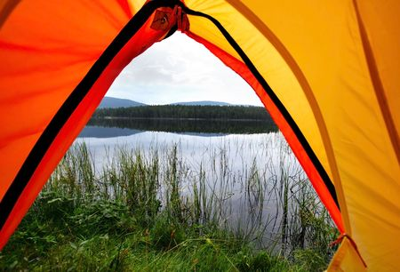 Camping in the Forest  Standard-Bild