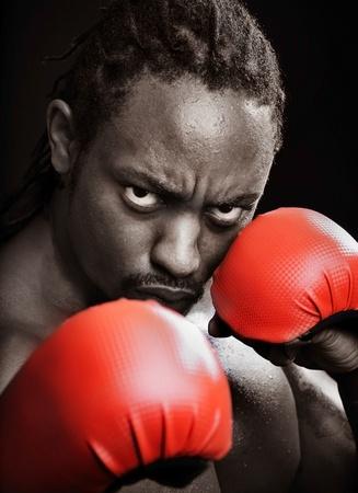 Boxer Stock Photo - 9871247