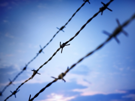 barbed wire against evening sky Stock Photo - 17113207