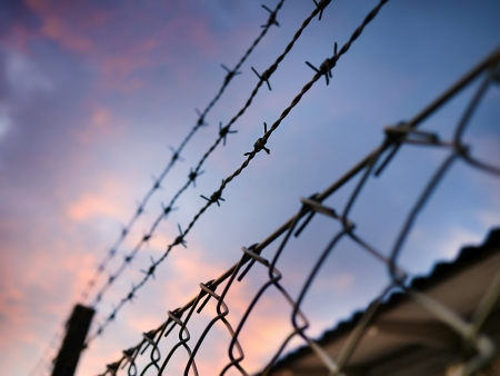 barbed wire against evening sky Stock Photo - 17113210