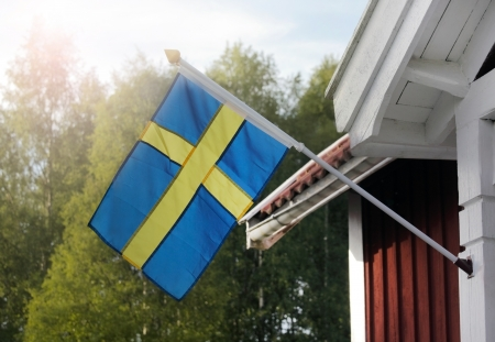 the swedish flag: Swedish flag