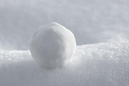 palle di neve: Primo piano foto di palla di neve alla luce del sole Archivio Fotografico