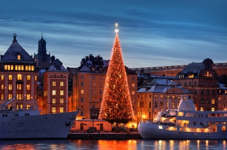 Stockholms old city with christmas tree Stock Photo