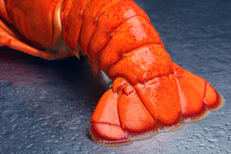 lobster tail: Lobster tail Stock Photo