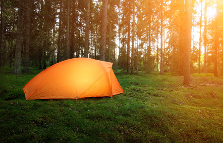 wilderness area: Camping in the Forest Stock Photo