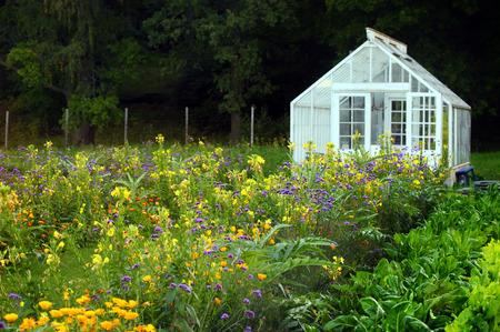 large greenhouse Banque d'images