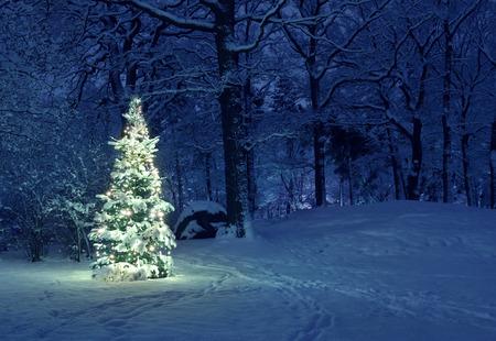 Kerstboom in de sneeuw Stockfoto