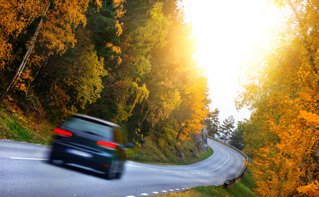 Coche en el camino en la FORES Foto de archivo - 49674569