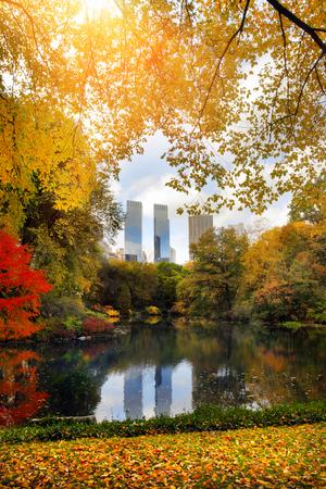 Central Park à New York Banque d'images - 49674573