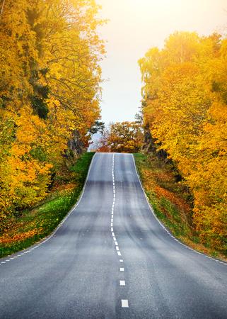Fall scenic road in Sweden