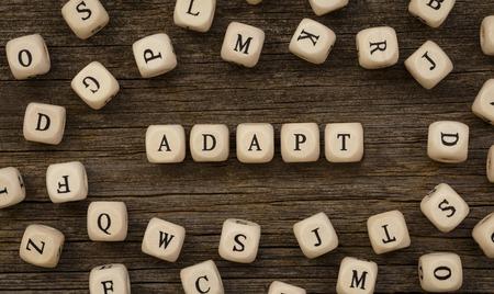Word ADAPT written on wood block Stock Photo