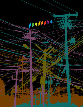 transmit: A rainbow of birds on a wire