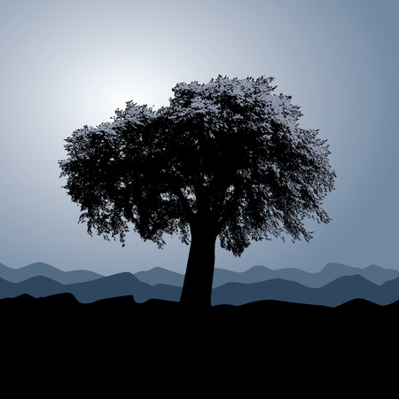 plats: A solitary tree stands in a winter background