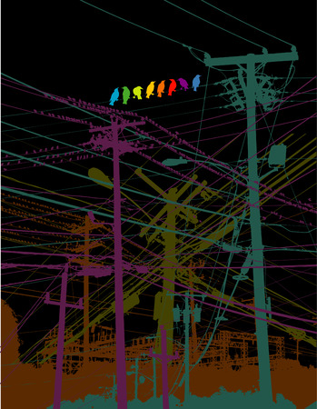 telephone pole: A rainbow of birds on a wire