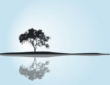 A solitary tree reflecting in water