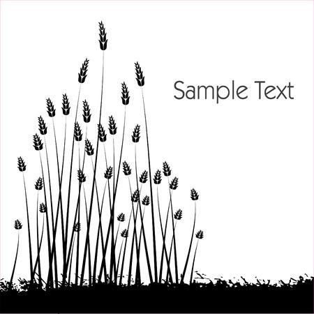 植生、白い背景の白い backgroundBlack シルエットに対する植生の黒いシルエット