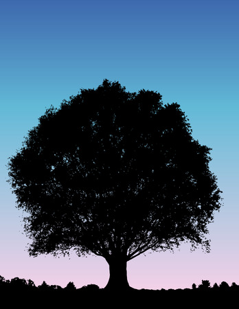 Vector tree background Çizim