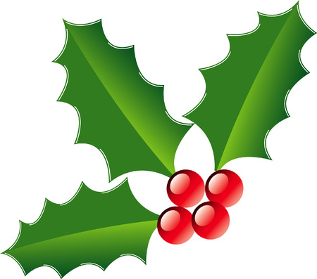A piece of Christmas holly on white in vector format