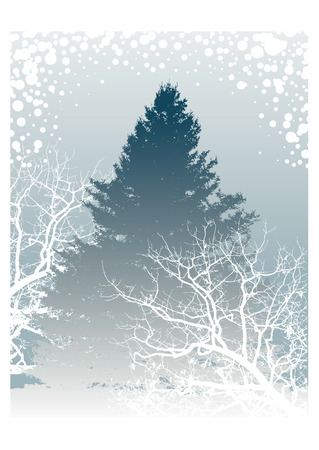 A vector winter landscape Vector