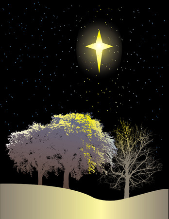 A winter scene of trees and a bright star