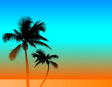 A tropical background with two palm trees.