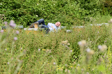 industriousness: Hardworking beekeeper taking a nap on his hives Stock Photo