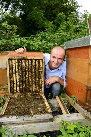 industriousness: Bienenschwarm