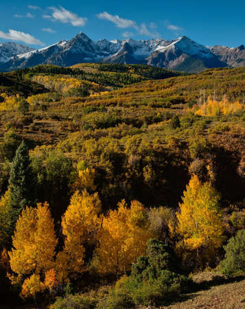 div: This classic view of the Sneffels Range looks especially pretty after an overnight blanket of snow.  I would have liked all the scrub oak to show their colors, but hey, the Aspens are not a bad alternative.  This image was taken near the top of Dallas Div