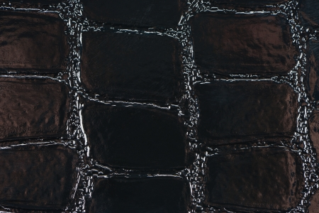 Black synthetic leather with embossed texture photo